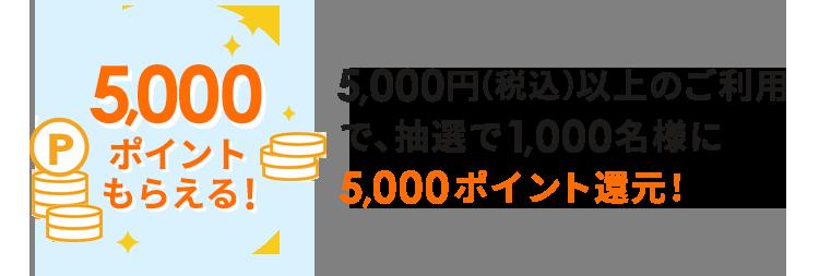 5,000円(税込)以上のご利用で、抽選で1,000名様に5,000ポイント還元!